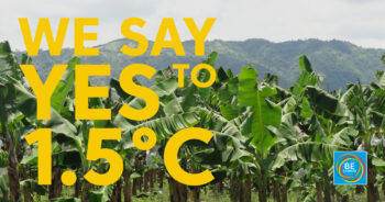 1.5 vs. 2°C Global Heating: Why Half a Degree Really Makes a Difference