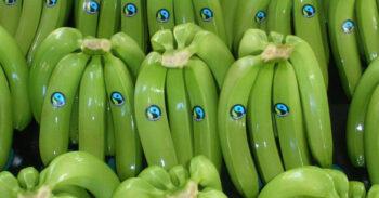 Die Fairtrade-Story
